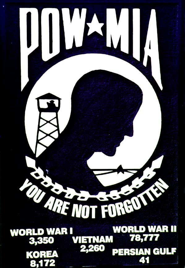 To our Brothers, Sons, Fathers . . . Pow-mia_flag
